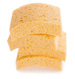 Scoopsponge