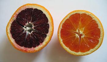 Orangesslice