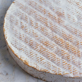 Cheese_mould_photo2