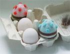 Eggcosies